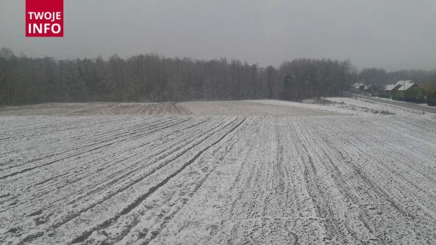 Wiosennie zasypane pola (fot.Twoje Info)