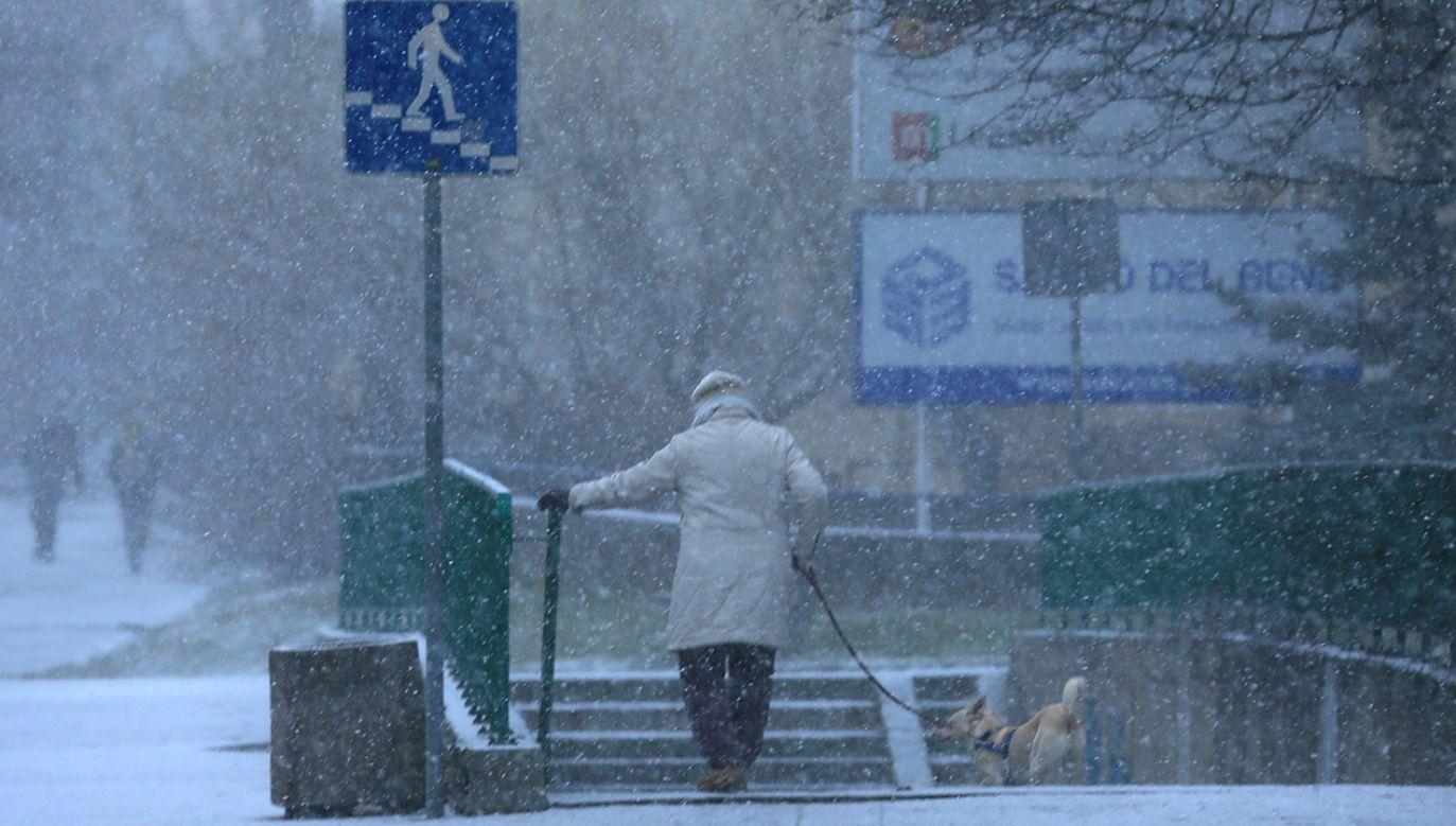Na drogach może być niebezpiecznie (fot. REUTERS/Radu Sigheti)