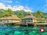 Podróżnik, Tahiti, Bounty i artyści