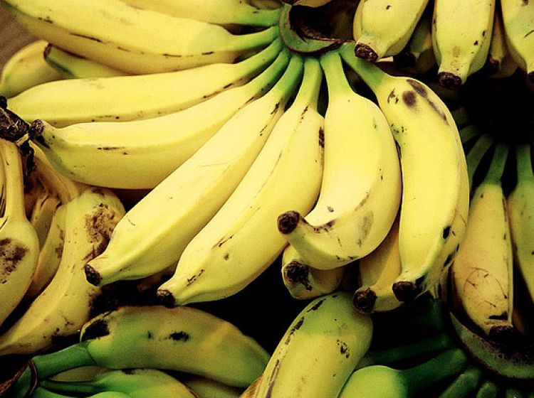 Transporcie banan 243 w by a kokaina tvp info