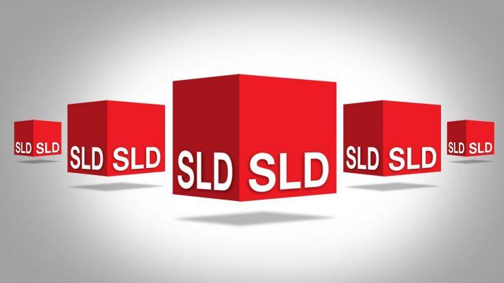 W Krakowie działa obecnie sześć kół SLD, a członków partii jest ponad 200.