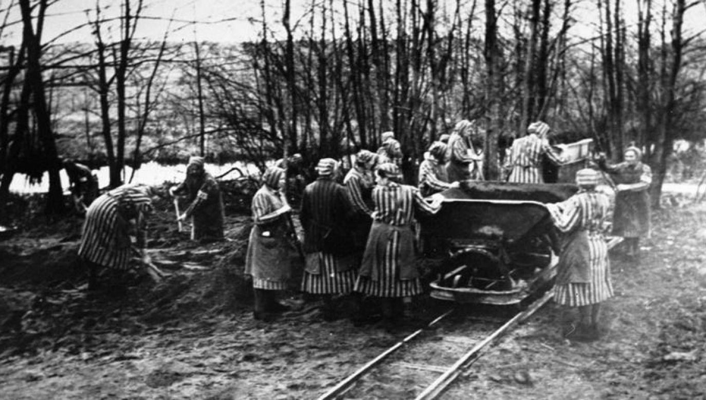 Więźniarki obozu w Ravensbrück (1939 r.) (fot. Wikimedia Commons/Bundesarchiv, Bild)