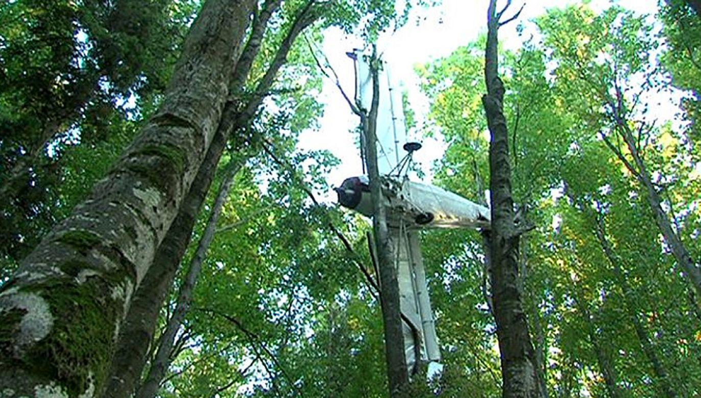 Samolot mógł być wykorzystywany przez przemytników (fot. TVP3 Rzeszów)