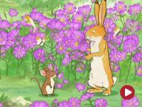 Nawet nie wiesz, jak bardzo cię kocham, Pole pełne kwiatów