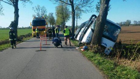 Na miejscu pracują policjanci strażacy i ratownicy pogotowia ratunkowego (fot. KMP Elbląg)