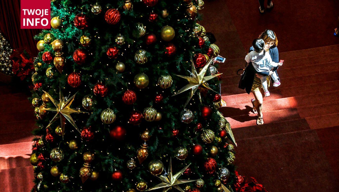 Jak wygląda Wasze bożonarodzeniowe drzewko? (fot. PAP/EPA/AHMAD YUSNI)