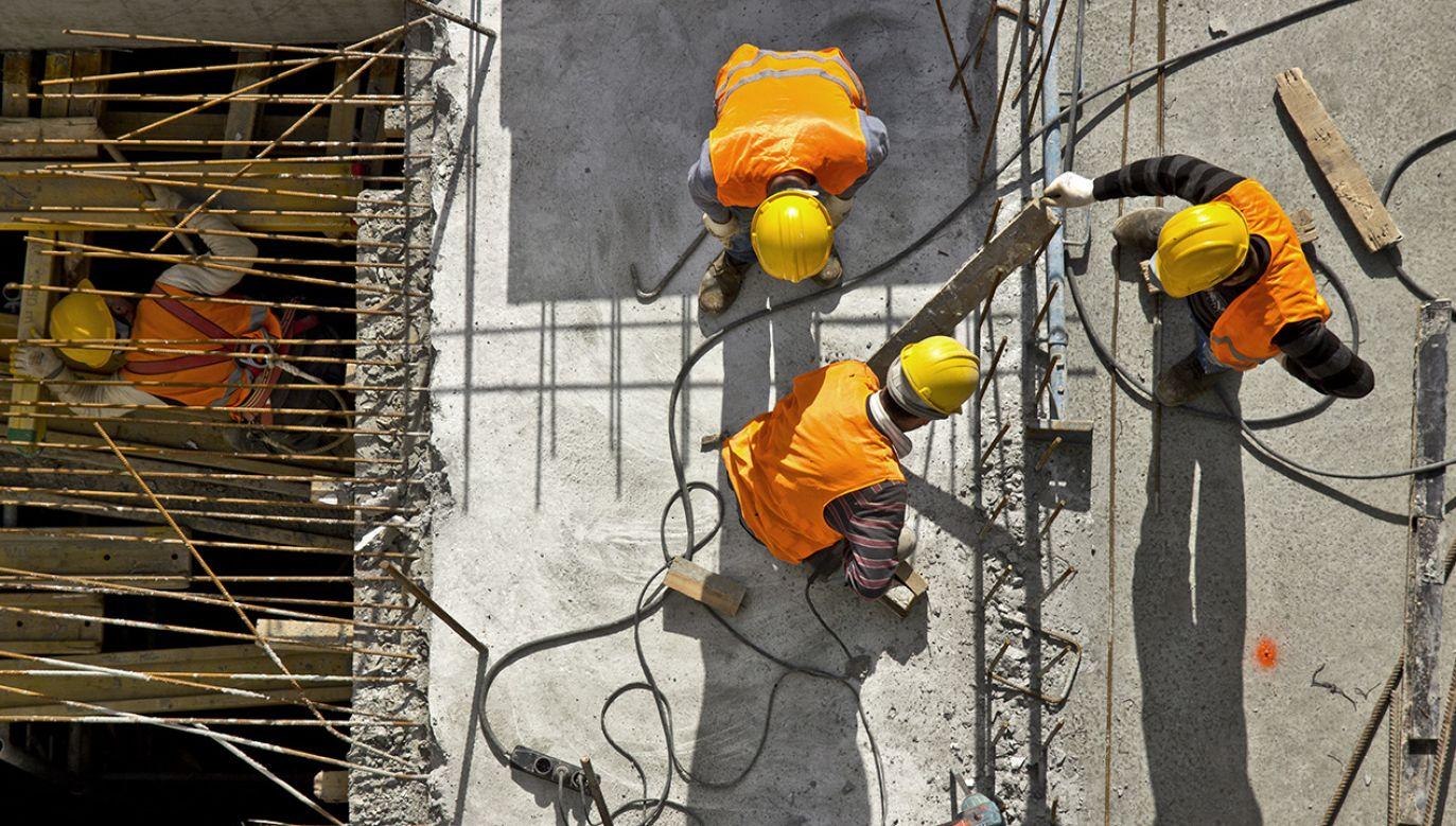 Czy polscy koordynatorzy pracujący dla zagranicznych agencji oszukują rodaków?  (fot. Shutterstock/Mr Ucarer)