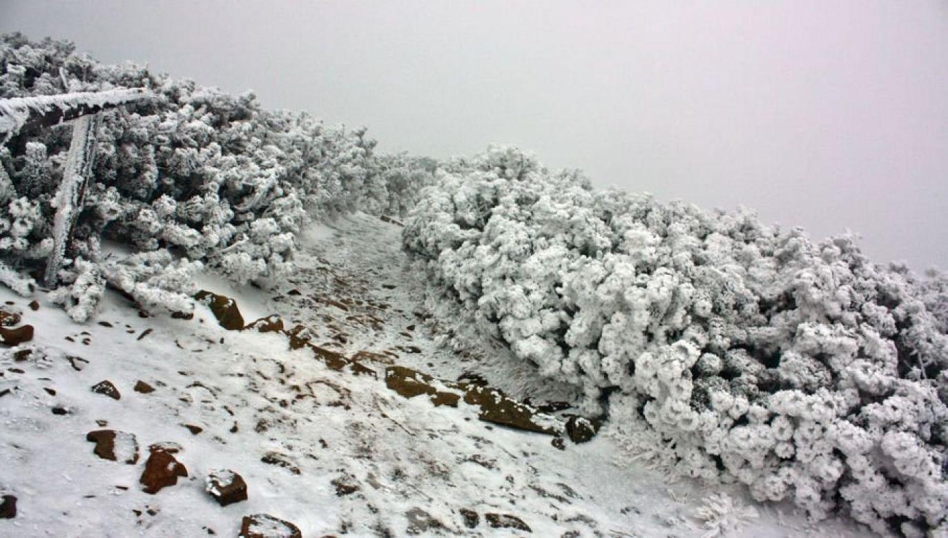 Na Babiej Górze panują złe warunki (fot. flickr.com/Jan Kraus)