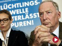 """""""AfD to groźne zjawisko polityczne, jak każda skrajna prawica w wydaniu niemieckim"""""""