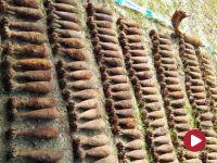 Bomba i granaty. Sto kilogramów ładunków wybuchowych leżało w lesie