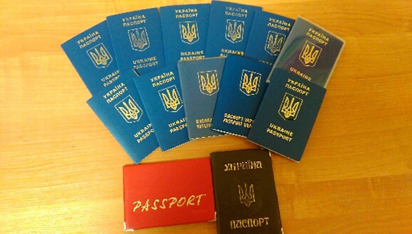 Funkcjonariusze Straży Granicznej zatrzymali 17 obywateli Ukrainy (fot. strazgraniczna.pl)