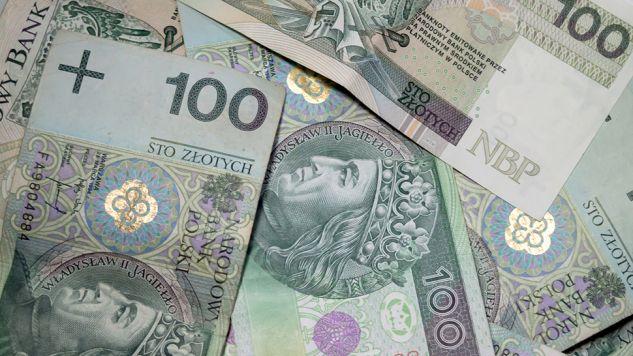 Polskie firmy w ostatnich latach straciły miliardy (fot. tvp.info/Paweł Chrabąszcz)