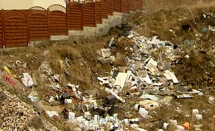 Dzięki zdjęciu w sieci posprzątają śmieci