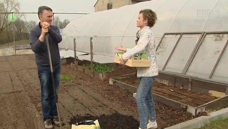 Ogródek bez ogródek