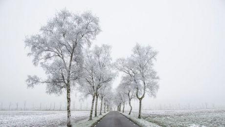 Czy we wtorek sypnie śniegiem? Sprawdź naszą prognozę
