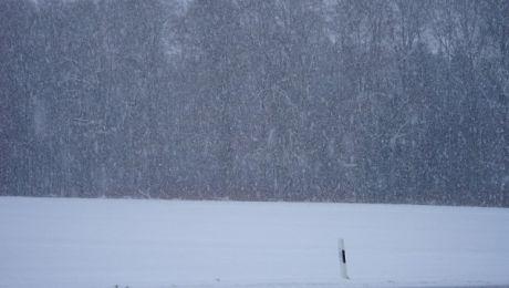 IMGW prognozuje wystąpienie opadów śniegu o umiarkowanym natężeniu (fot. pixabay.com)