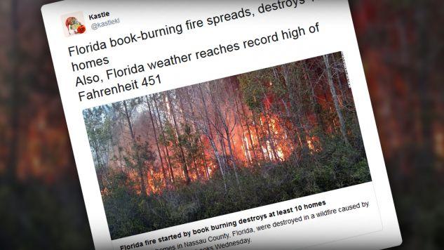 Potężny pożar strawił prawie 400 akrów lasu (fot. tt/Kastle)