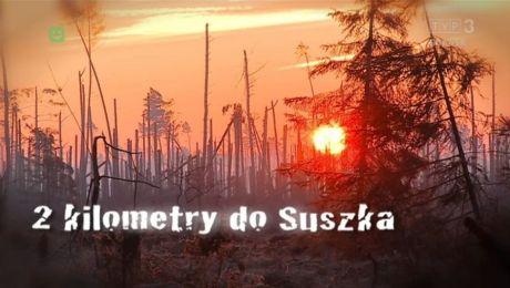 2 km od Suszka. Rok po nawałnicy