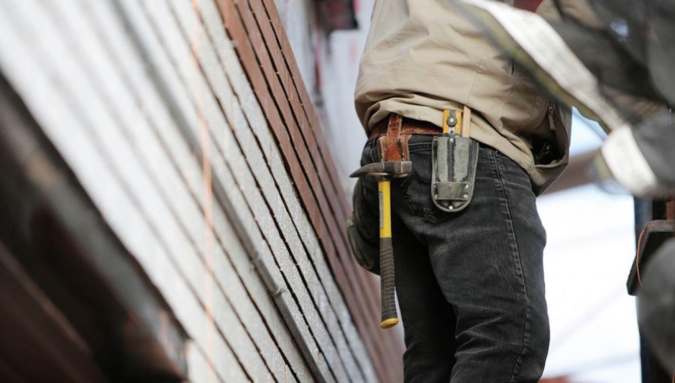 Ułatwienia mają dotyczyć m.in. ściągania budowlańców (fot. Pixabay/Life-Of-Pix)