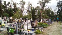 Drzewa wyrwane z korzeniami uszkodziły nagrobki na cmentarzu w Nakle (Bartłomiej Wnuk)