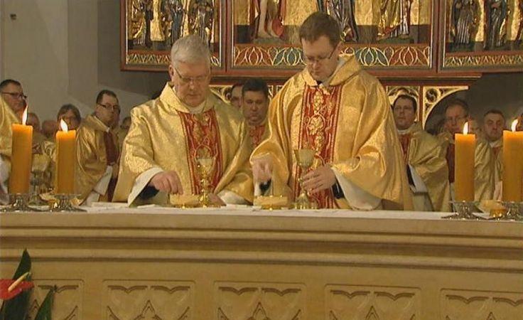 Synod biskupów
