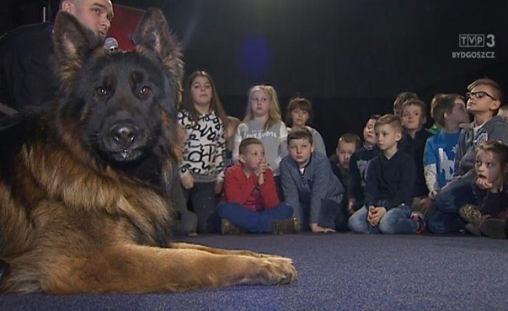 Dzieciaki już wiedzą, co robić widząc groźnego psa