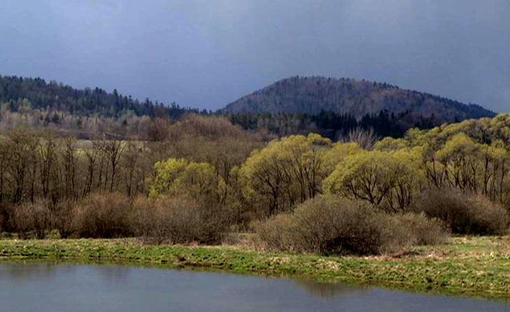 Na szczycie Łopiennika leśnicy i turyści uczcili pamięć Wincentego Pola