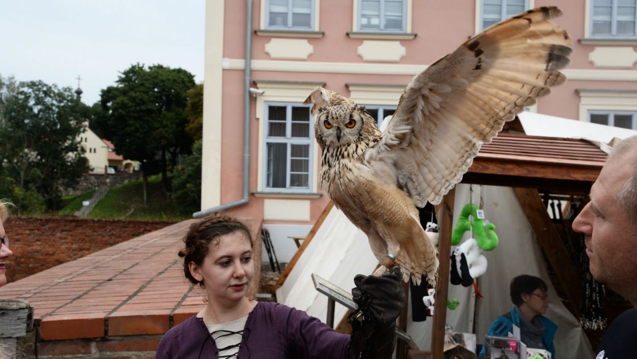 Odbył się także pokaz drapieżnych ptaków (fot. J. Bogacz/TVP)