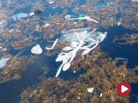 Plastik jest wszędzie – film dokumentalny