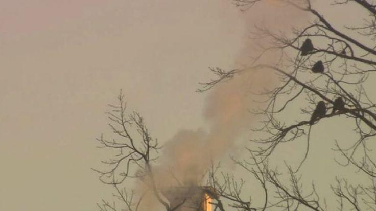 W ostatnich tygodniach problem smogu mocno się nasilił