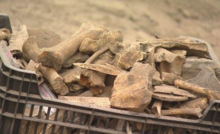 Jakie skarby kryje pasymska ziemia? Sprawdzają to archeolodzy