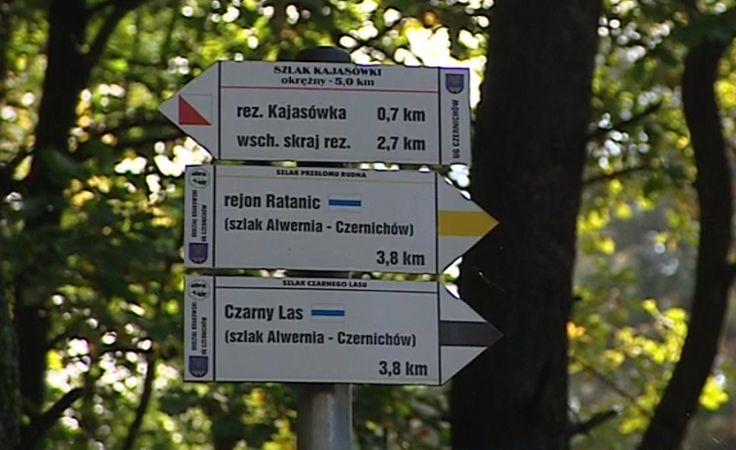 Małopolskie parki krajobrazowe będą chronione przed zabudową