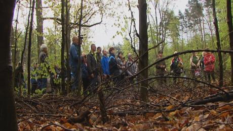 Mieszkańcy razem z leśnikami posadzili kilka tysięcy dębów