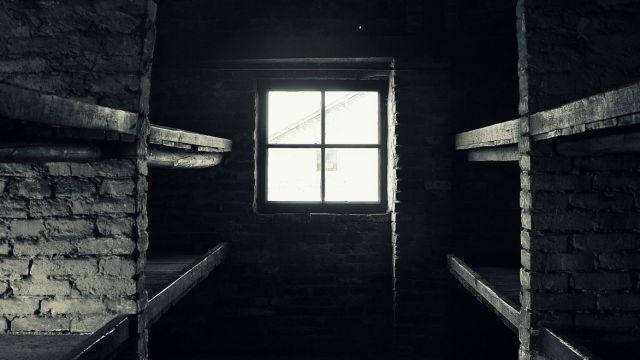 Głód, mróz, samotność i strach. Wspomnienia byłych więźniów z Auschwitz-Birkenau