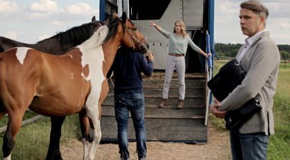Stare konie i spadek – odc. 66