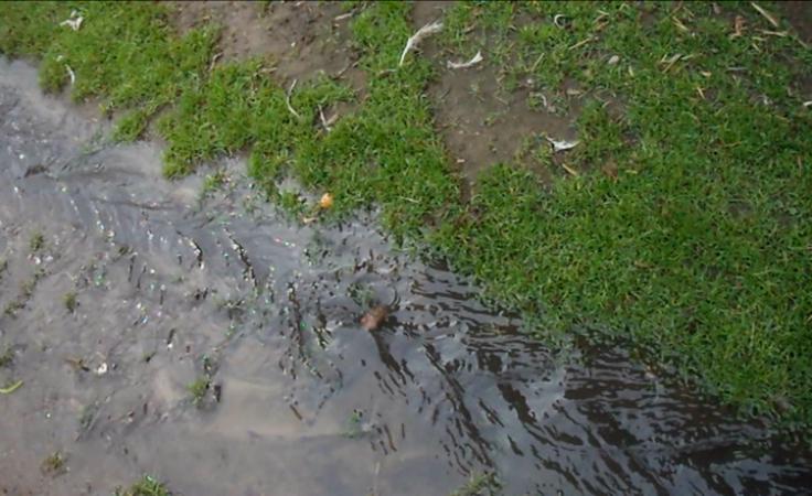 Szambo na podwórzu. Kto jest winny powstawaniu rzeki ścieków?