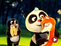 Krecik i Panda, Ciekawa pułapka