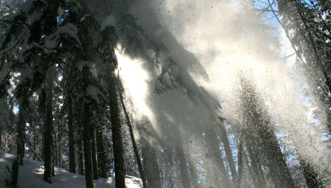 Ratownicy górscy odradzają wychodzenie w góry (fot. Flickr/parade1st)