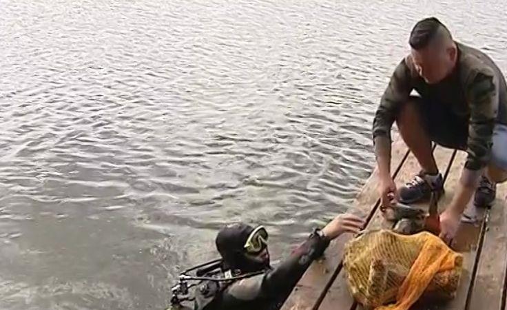 Oczyścili Jezioro Środkowe w Gostycynie