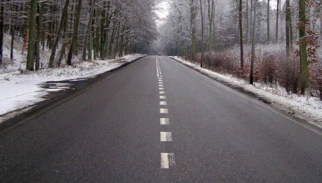 W chwili wypadku droga była śliska (fot. flickr.com/magro_kr)