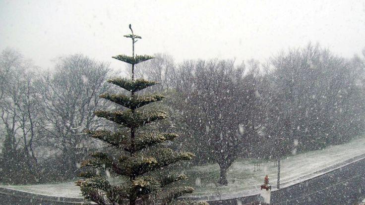 Meteorolodzy ostrzegają przed opadami śniegu na Dolnym Śląsku (fot. flickr.com)
