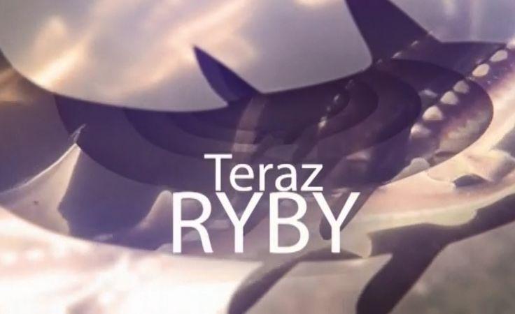 Teraz Ryby