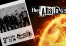 the-analogs-na-summer-fall-festival