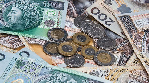 Luka VAT w Polsce określona jest na poziomie ok. 10 mld euro (fot. Shutterstock/Przemek Tokar)