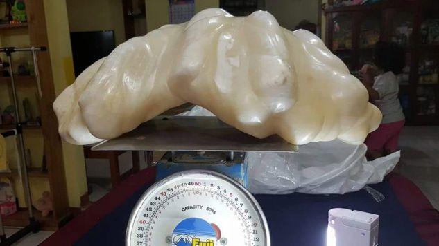 Eksperci szacują, że perła jest warta co najmniej 100 mln dolarów (fot.PAP/ EPA/PUERTO PRINCESA)