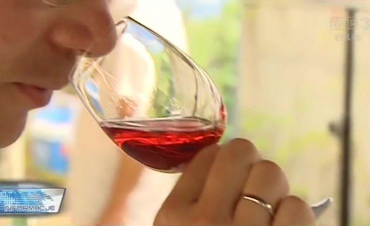 Raj nie tylko dla Kipera. Wielka degustacja win