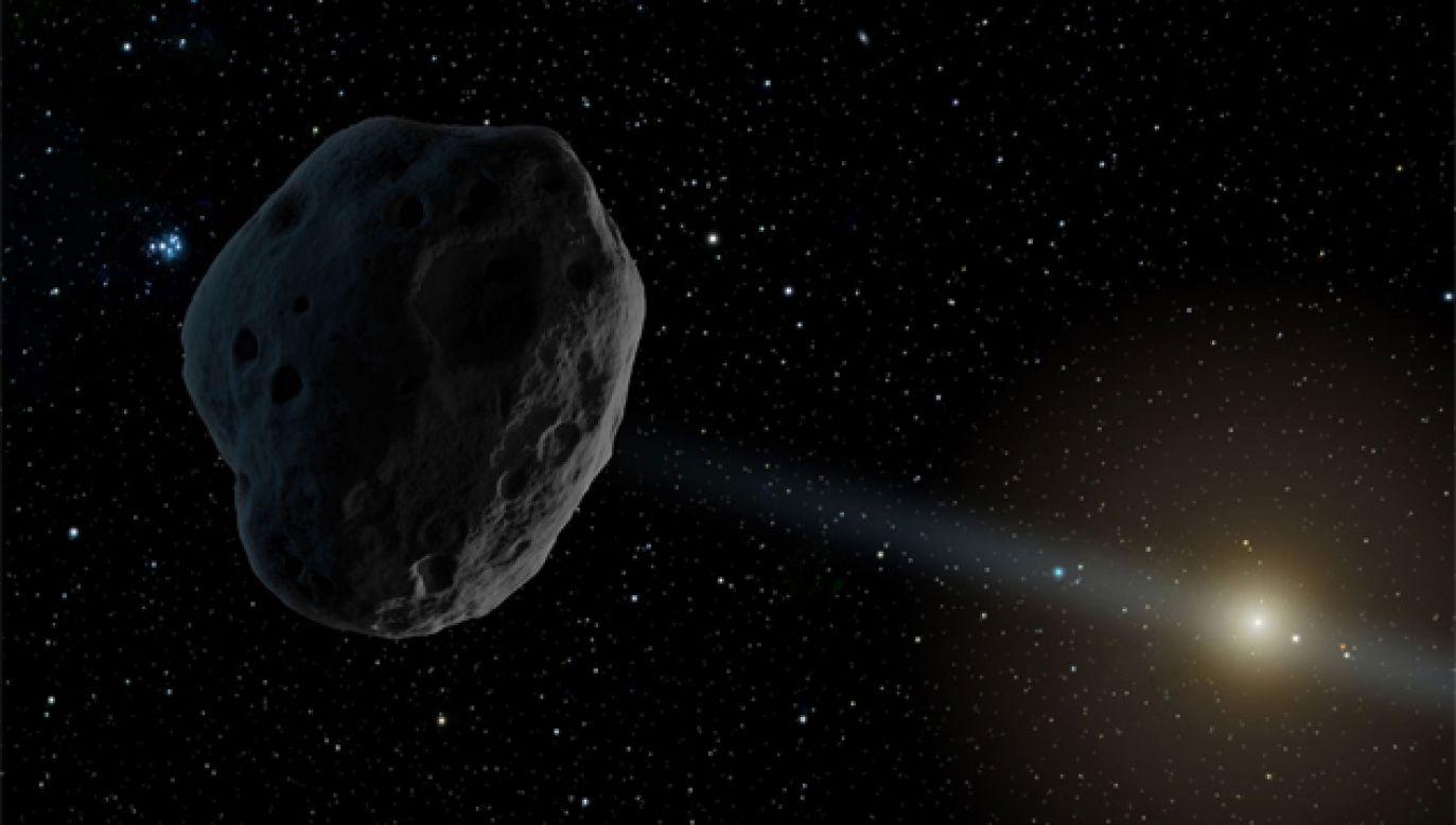 Planetoidy, którym nadano nazwy na cześć Polek, odkryto w 2012 roku (fot. NASA)