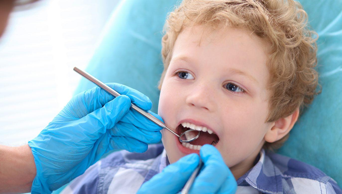 Problemy z próchnicą wynikają m. in. z niewłaściwego dbania o higienę jamy ustnej (fot. Shutterstock/Vitali Michkou)