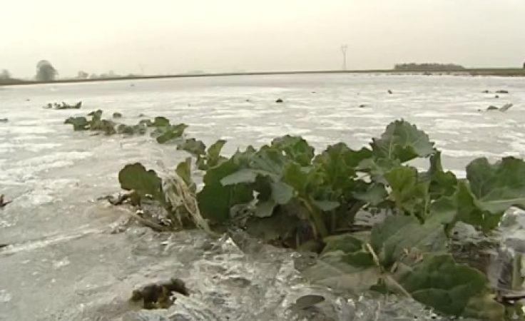 Sto tysięcy hektarów zalanych pól i wielomilionowe straty