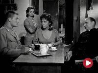 Chleb, miłość i zazdrość – film fabularny